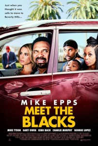 Meet-the-Blacks-poster